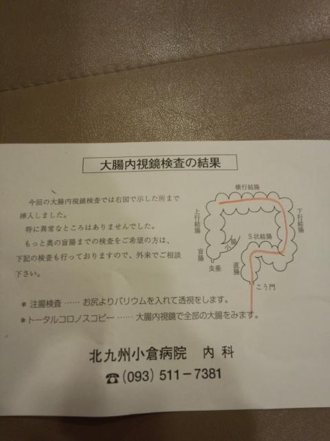 DCF00117.jpg